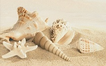 Декор 25х40 Amalfi sand decor 01